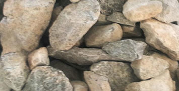 cribissa grava 1 1-2